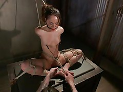 Kristina likes to sit comfortable and she was a fucking whore with no respect until this fellow putted his paws on her. Now she's all fastened up has clamps on her nipps that are pulling those small scoops and a ball is used to gag her pretty mouth. Kristina sits there and gets whipped and punished, she deserves it.