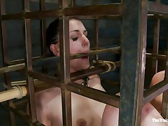 She was a bad girl and they had to put her in a cage and reeducate her. Now this playgirl is receiving what this playgirl deserves, a hard spank and some well deserved humiliation. Of course her hairless cum asking cunt is not to be neglected and the executor uses a fake penis to taunt her a bit. Want to this playgirl the rest of it?