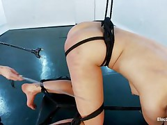 This brunette hair is one hot piece of wazoo and she needs some punishment. The blonde slut bound her up good and made her stay bent over so she could enjoy that hot booty. That babe spanks her wazoo and shocks it in advance of inserting a plugged in metal sex toy. That babe endures it all the way as the dominatrix-bitch penetrates that hot butt